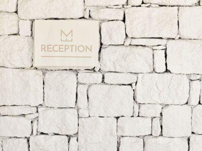 Mykonos Earth Suites – Reception (1)